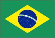 Flagga för Brasilien